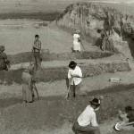 Grădiștea, jud. Călărași, Situl arheologic de la Bogata, Campania 1956