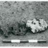 Boian-1-13-1959.jpg