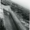 Boian-11-11-1958.jpg