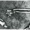 Boian-11-33-1958.jpg