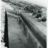 Boian-11-8-1958.jpg
