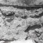 Radovanu, jud. Călărași, Situl arheologic ''la Muscalu'', Campania 1973