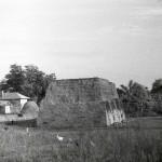 Cunești, jud. Călărași, Stațiunea neolitică de la Cunești, an necunoscut