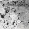 Cunesti-Radovanu-1980-14.jpg