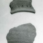 Radovanu, jud. Călărași, Situl arheologic ''La Muscalu'', an necunoscut