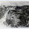 Garvan-Tulcea-Situl-arheologic-Dealul-Cracanele-film3-10-1956.jpg