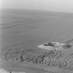 Radovanu, jud. Călărași, Situl arheologic ''la Muscalu'', Campania 1964