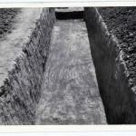 Radovanu, jud. Călărași, Situl arheologic ''la Muscalu'', Campania 1986