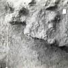 Radovanu-Calarasi-Muscalu-campania-1971-film-1-36.jpg