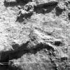 Radovanu-Calarasi-Muscalu-campania-1971-film-3-01.jpg