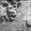 Radovanu-Calarasi-Muscalu-campania-1971-film-3-09.jpg
