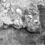 Radovanu, jud. Călărași, Situl arheologic