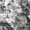 Radovanu-Calarasi-Muscalu-campania-1975-film-3-11.jpg