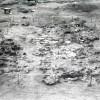 Radovanu-Calarasi-Muscalu-campania-1975-film-3-26.jpg