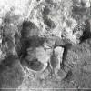 Radovanu-Calarasi-Muscalu-campania-1975-film-4-03.jpg