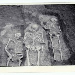 Radovanu, jud. Călărași, Situl arheologic ''la Muscalu'', an neprecizat