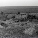 Radovanu. jud. Călărași, Situl arheologic