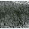 Sit-arheologic-neidentificat-1-45.jpg
