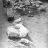 Slon-Rad-Dia-1974-009.jpg