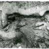 Varasti-1-1956-1.jpg